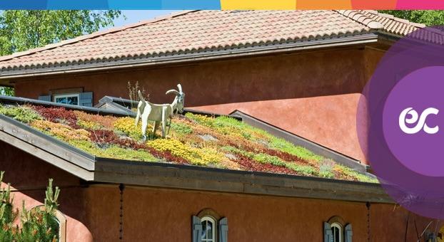 Lastrico Solare Infiltrazioni E Risarcimento Danni Le Novità
