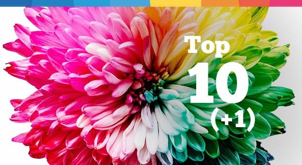 La Top 10 (+1) delle guide e degli articoli pubblicati sul Blog Danea